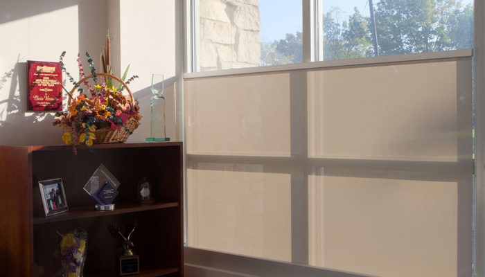 Draper Inc. Bottom-up Solar Shades, Window Treatments